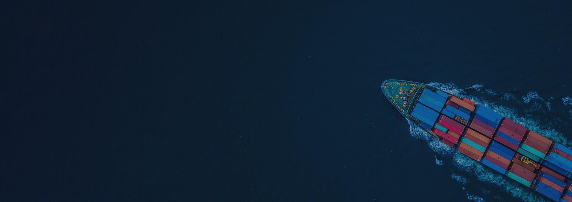 Brimit Enterprise Web Development Services